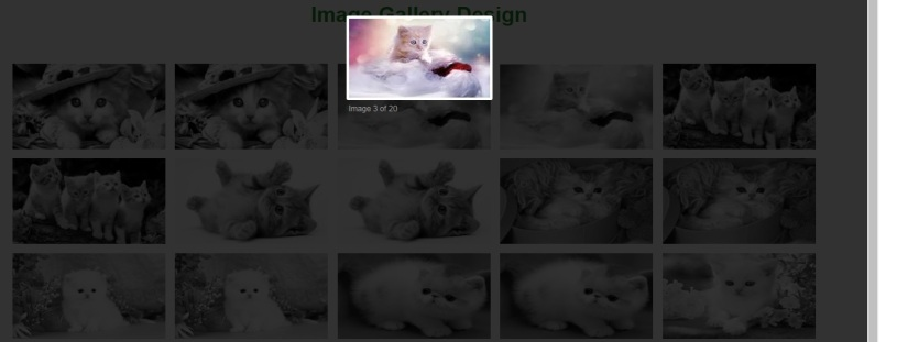 How To Create Image Gallery In HTML, CSS and Javascript Lightbox Gallery part 2